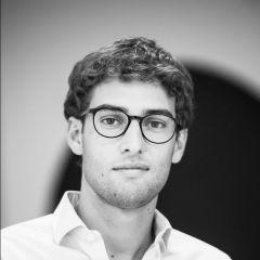 Federico-Bizzarri-Dominanza